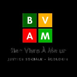 BVAM transparent